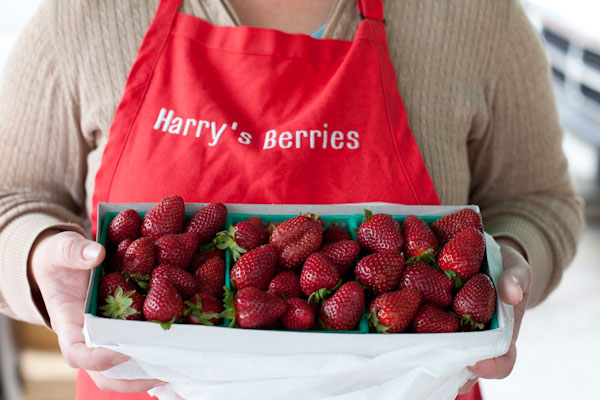 harrysberries