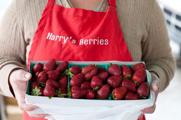harrysberries