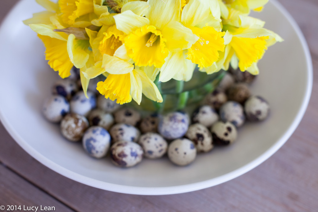 easter daffodils with quail eggs