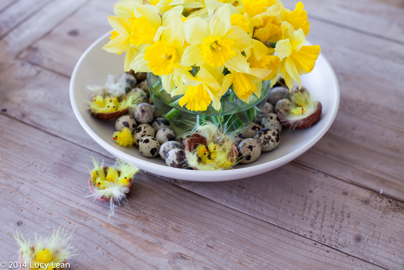 quails eggs with daffodils