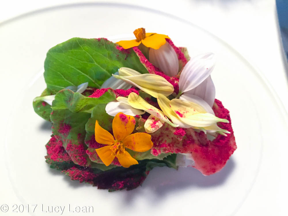 Massimo Bottura Spring Caesar Salad - Lean Luxury Lucy Lean