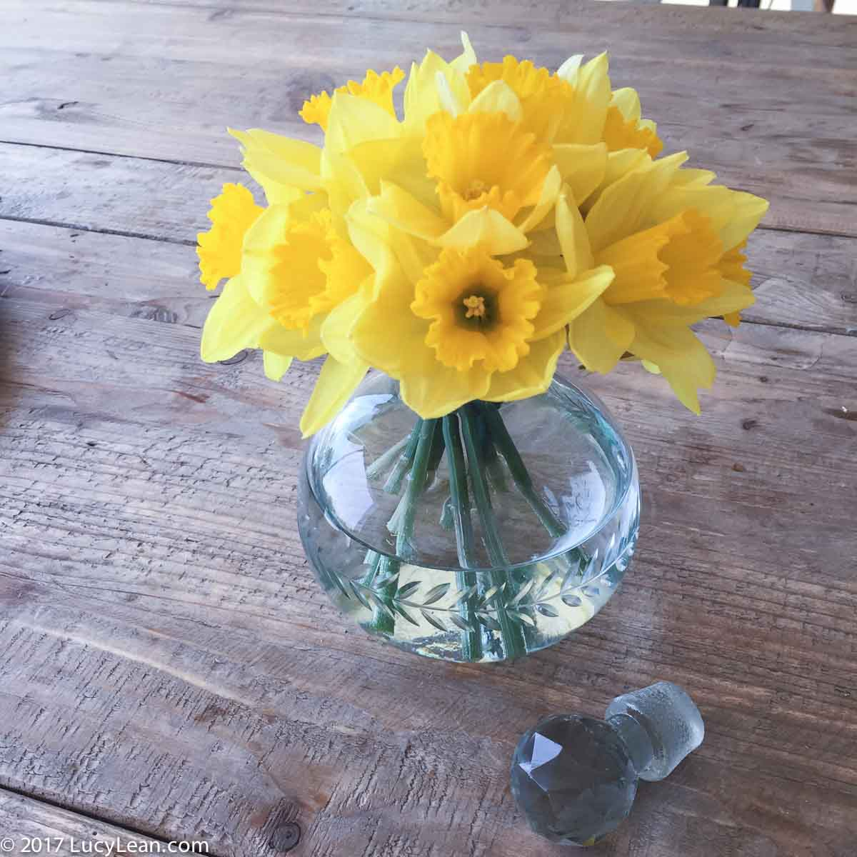 Rosé Corner - Easy Entertaining at Home Lucy Lean Daffodils